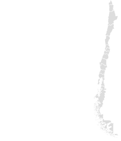 Color Blank Map of CHILE with Statistics
