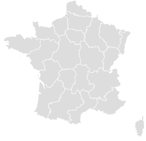 Color Blank Map of FRANCE with Statistics