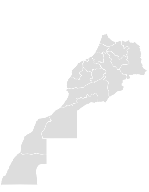 Color Blank Map of MOROCCO with Statistics