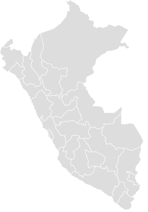 Color Blank Map of PERU with Statistics