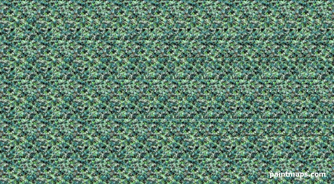 GEORGIA Map in 3D Stereogram (Magic Eye)