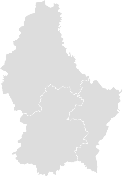 Color Blank Map of LUXEMBOURG with Statistics