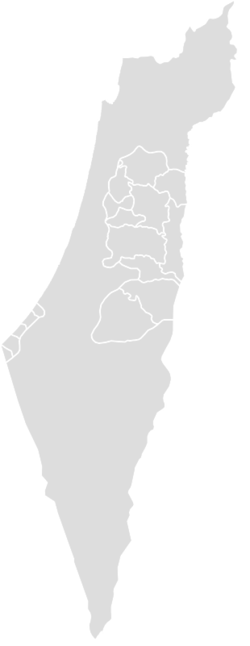 Color Blank Map of PALESTINE with Statistics