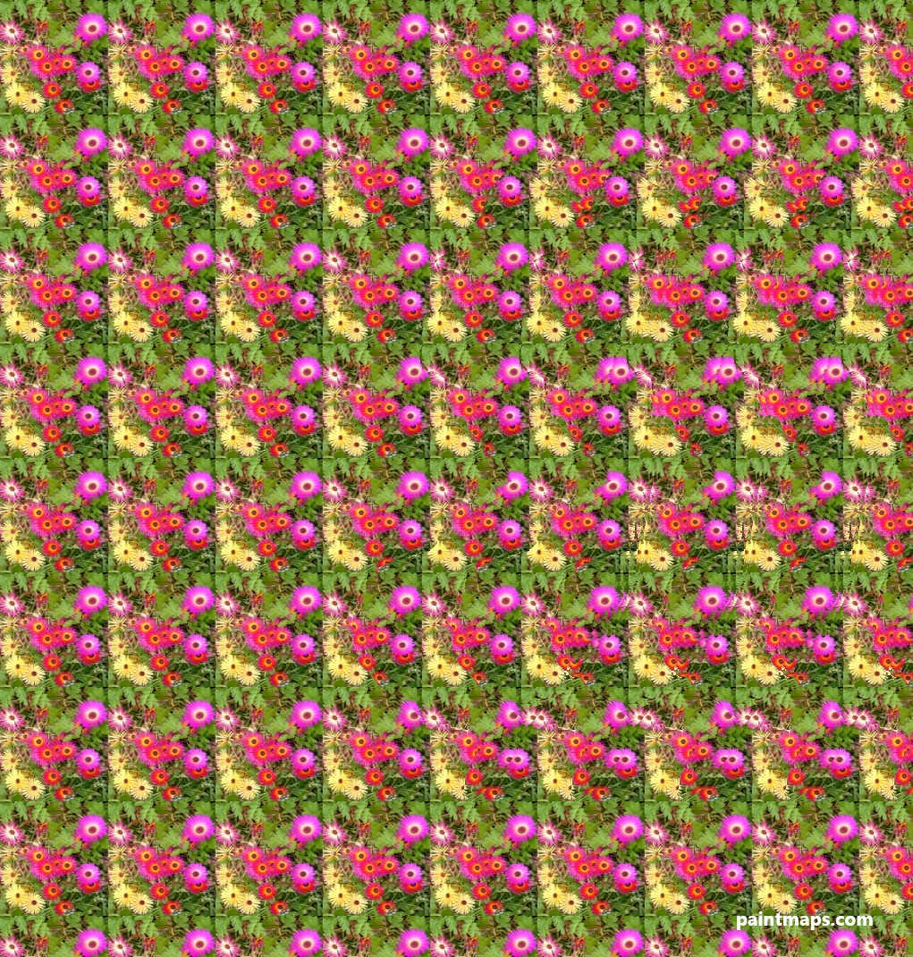 New-Jersey Map in 3D Stereogram (Magic Eye)